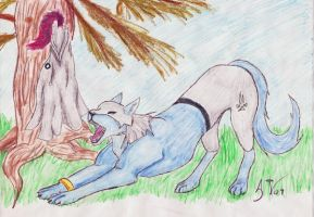 A Nice Morning Stretch by Soulful-Purple-Wolf