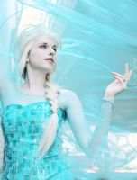 Sharp and Clear : Elsa by Lossien