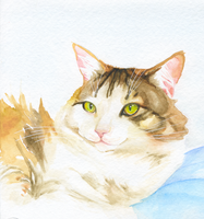 Mimzy watercolor by LittleIggyDog