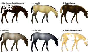 Horse Adoptables (1 left) by Myxprint