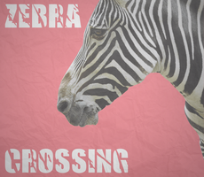 Zebra Crossing image thingy by SpaceDelusion