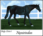 #22 SES Nymirindan by Shayla-Estate