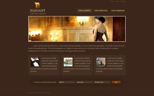 Elegant webdesign template by bographics