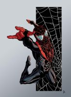 Ultimate Spiderman colors by BDixonarts