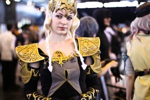 Dark Zelda at Japan expo 12th by Narayu