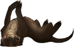 ferret by LiLaiRa