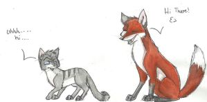 cat and fox by xLossen
