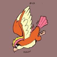 018 Pidgeot by toadcroaker