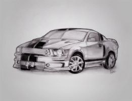 shelby.. by packness