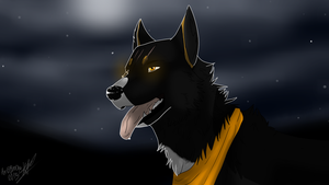 Night Dog by Bloodjer