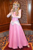 Princess Aurora by Anime-Ray