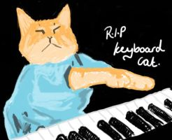 RIP Keyboard cat by catcrazy09