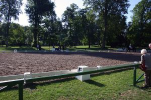 Dressage Arena Stock 5 by LuDa-Stock