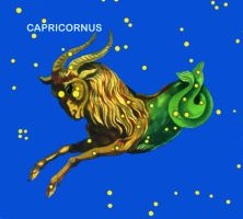 Constellation Capricornus by VitaZheltyakov