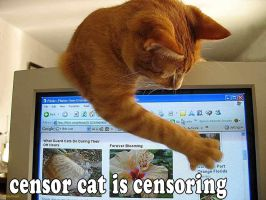 censor cat by doom1272
