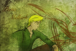 Peeta Mellark Wallpaper by dede23