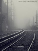 Railroad tracks in the fog by darina96