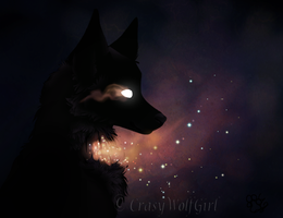 Guardian Of The Stars by CrasyWolfGirl