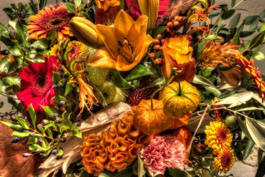 Flowers HDR by scopolamin