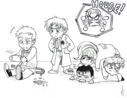 Chibi House M D by Anouk-Sparrow
