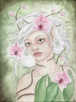 Orchid by Eimiel