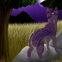 African Night by Spottedfire23