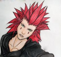 Axel Organization XIII by ShiningLight72