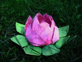 Origami Lotus by WaterLily-Gems