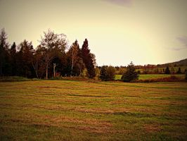 Field Stock by philippeL-stock