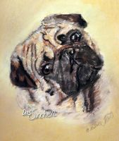 Pug Drawing by dunkelbunt12