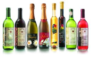 Wines Bottles by KuDeTa