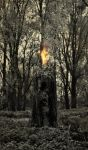 The dark doctrines: the wooden candle by dcf