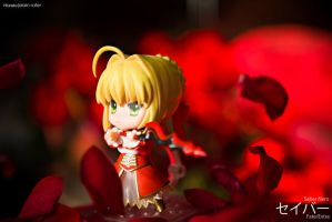 Fate/Extra - Saber Nero by alainbrian