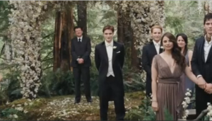 Wedding of Edward and Bella by Lilzzie