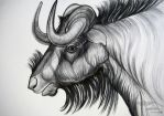 Gnu by HouseofChabrier