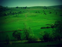 My Green Romania by stefanpriscu