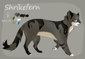 warrior oc -Shrikefern ref by Bonday