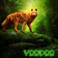 VooDoo For Darq by Howl-n-Hart