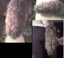 gray werewolf tail -yarn- by KikiAvelan