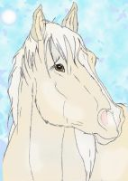 Cloud: stallion of the rockies by mustang-spirit