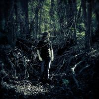 Through the Eye of the Woods by Ditchmaster