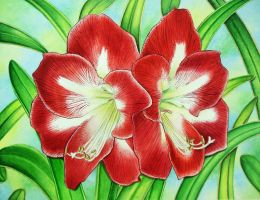 Amaryllis by joeyartist