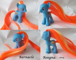 Barnacle g1 to g4 by Roogna