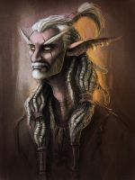 Aage the Pirate Night Elf by TheTundraGhost