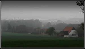 foggy morning by Weissglut