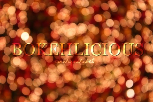 weloveBOKEH by inahque