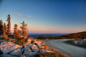 Dolly Sods WV I by Logicalx