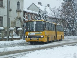 The 200000th Ikarus - in january, 2013 -2 by morpheus880223