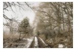 A January Day by AndersStangl