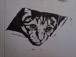 Ceiling Cat Is Watching You by Dufte